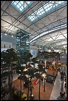 Trees inside Incheon international main terminal. South Korea ( color)