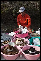 Man selling natural ingredients. South Korea ( color)