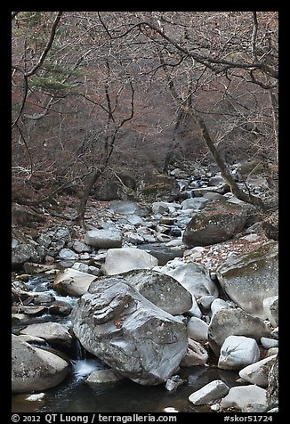 Stream in winter near Haeinsa. South Korea (color)