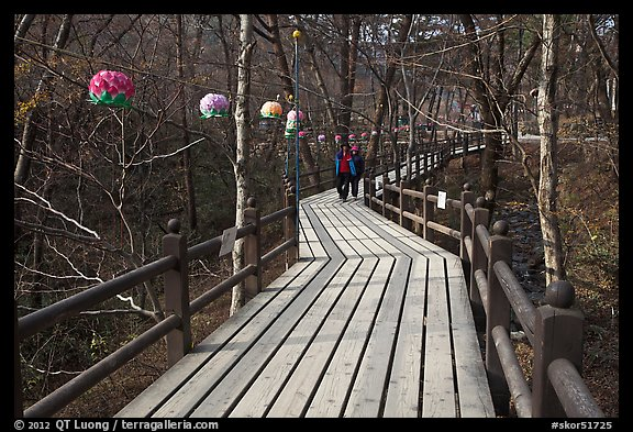 Elevated boardwalk near Haeinsa. South Korea (color)