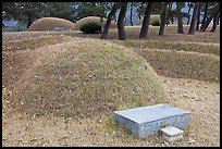 Burial mounds. Hahoe Folk Village, South Korea (color)