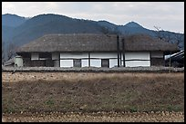 Straw roofed house. Hahoe Folk Village, South Korea
