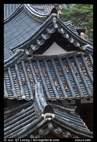 Tiled roofs. Hahoe Folk Village, South Korea