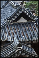 Tiled roofs. Hahoe Folk Village, South Korea (color)
