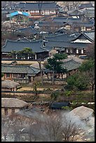 View from above. Hahoe Folk Village, South Korea (color)