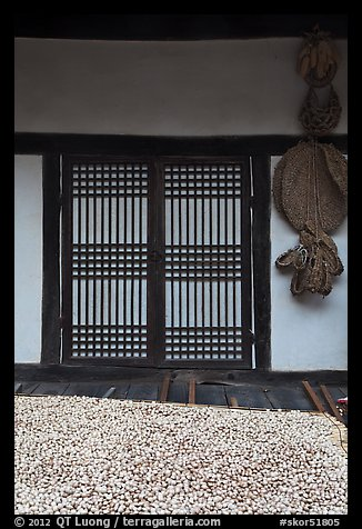 Nuts, screen door, and baskets. Hahoe Folk Village, South Korea (color)
