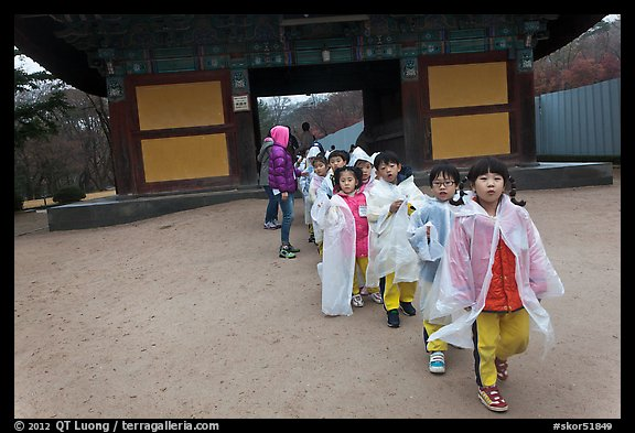 Schoolchildren with raingear, Bulguksa. Gyeongju, South Korea (color)