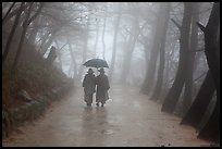 Nuns walking with unbrella on foggy path, Seokguram. Gyeongju, South Korea (color)