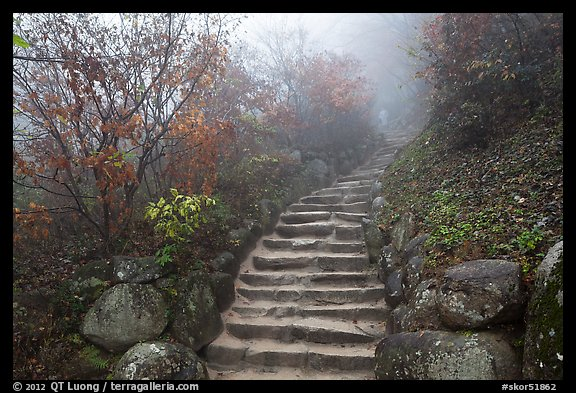Stone stairs in fog, Seokguram. Gyeongju, South Korea