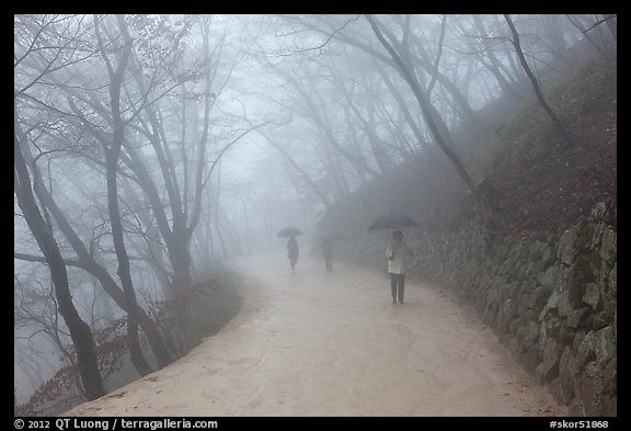 Visitors walking in fog, Seokguram. Gyeongju, South Korea (color)