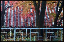 Fence with Buddhist symbol, and roof with fallen leaves, Bulguksa. Gyeongju, South Korea (color)