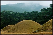 Barrows and misty mountains, Mt Namsan. Gyeongju, South Korea ( color)