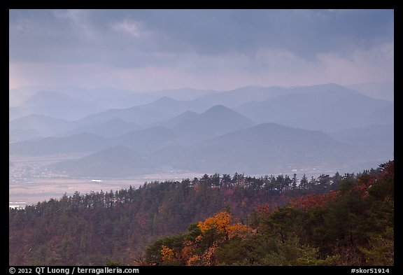 Forest slopes and distant misty hills, Mt Namsan. Gyeongju, South Korea (color)
