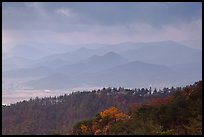 Forest slopes and distant misty hills, Mt Namsan. Gyeongju, South Korea ( color)