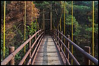 Suspension bridge, Namsan Mountain. Gyeongju, South Korea (color)