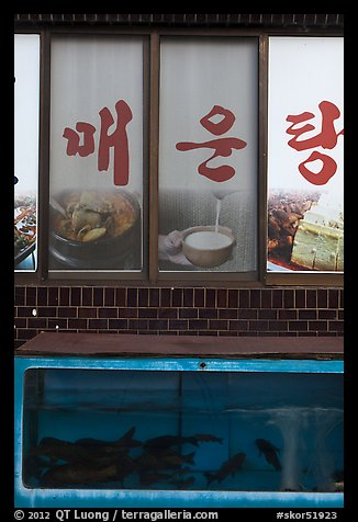 Fish tank and food pictures. Gyeongju, South Korea (color)