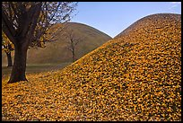 Grassy burial mounds in autumn. Gyeongju, South Korea (color)