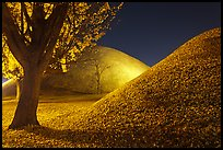 Tumulus and fallen leaves at night. Gyeongju, South Korea ( color)