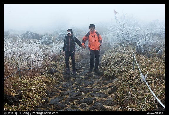 Couple hiking holding hands in fog. Jeju Island, South Korea