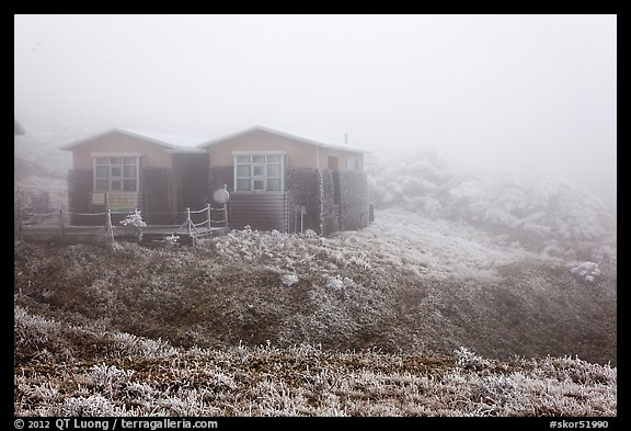 Witseoreum shelter in fog, Mount Halla. Jeju Island, South Korea (color)