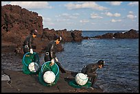 Old Haeneyo women preparing for dive. Jeju Island, South Korea ( color)