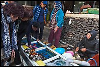 Seafood for sale by Haeneyo women. Jeju Island, South Korea (color)