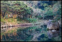 Reflections near Cheongjiyeon Pokpo, Seogwipo. Jeju Island, South Korea (color)