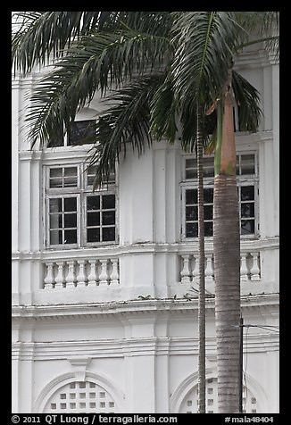 Palm and facade detail, city hall. George Town, Penang, Malaysia (color)