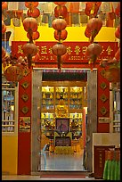 Penang Gelugpa Buddhist Association temple. George Town, Penang, Malaysia ( color)
