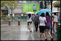 Women walking under unbrella during downpour. Singapore