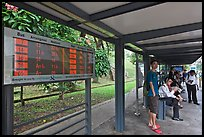 Bus stop with displays with expected wait time. Singapore