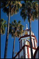 Church and palm trees, Tlaquepaque. Jalisco, Mexico (color)