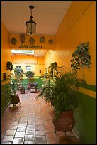 Entrance patio of La Posada bed and breakfast, Tlaquepaque. Jalisco, Mexico (color)
