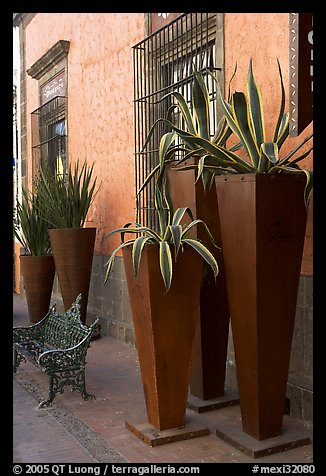 Pots with agaves for sale outside a gallery, Tlaquepaque. Jalisco, Mexico
