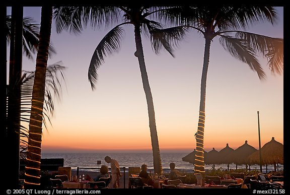 Outdoor dining under palm trees at sunset, Nuevo Vallarta, Nayarit. Jalisco, Mexico