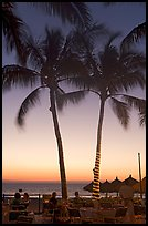 Outdoor restaurant with palm trees at sunset, Nuevo Vallarta, Nayarit. Jalisco, Mexico