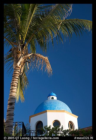 Palm tree and  blue dome, Puerto Vallarta, Jalisco. Jalisco, Mexico (color)