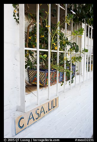 Window of home with plant and ceramic name plate, Puerto Vallarta, Jalisco. Jalisco, Mexico (color)