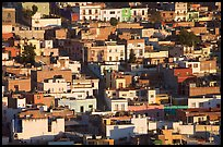 Houses on hill, late afternoon. Zacatecas, Mexico