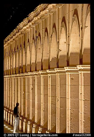 Columns of Poseda de la Moneda by night. Zacatecas, Mexico (color)