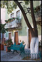 Tree, publich bench, and house on Plazuela San Fernando. Guanajuato, Mexico