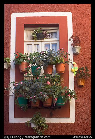 Window decorated with many potted flowers. Guanajuato, Mexico (color)