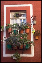 Window decorated with many potted flowers. Guanajuato, Mexico