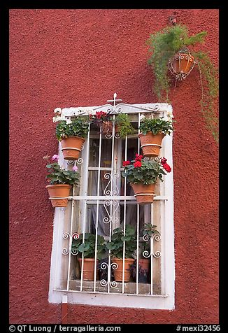 Window decorated with many potted plants. Guanajuato, Mexico