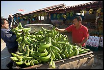 Man unloading bananas from the back of a truck. Mexico (color)