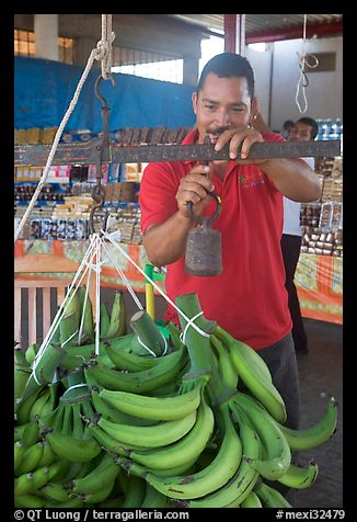 Man weighting bananas. Mexico (color)
