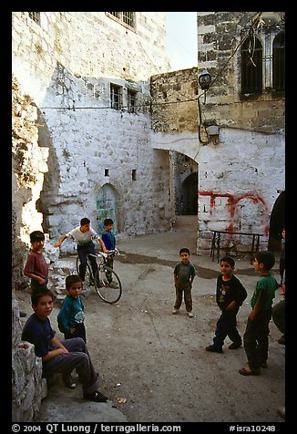 Group of children in old street, Hebron. West Bank, Occupied Territories (Israel) (color)