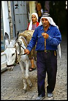 Arab man leading a donkey, Hebron. West Bank, Occupied Territories (Israel) ( color)