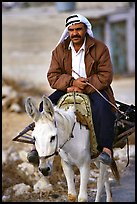 Arab man riding a donkey, Hebron. West Bank, Occupied Territories (Israel) (color)