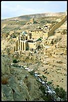 Mar Saba Monastery and steep Kidron River gorge. West Bank, Occupied Territories (Israel) (color)